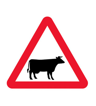 Midland Fire - Road Sign (cow's crossing)